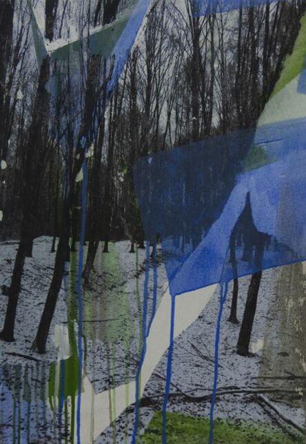 Levente Szücs, 'AUGMENTED NATURE #0021', 2019