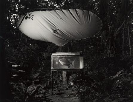 Kozo Miyoshi, 'Irozaki, Shizuoka', 1988