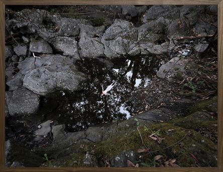 Bootsy Holler, '0415.1844 Ahu Lani River ', 2020