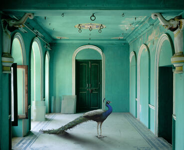 Karen Knorr, 'The Queen's Room, Zanana, Udaipur City Palace', 2010