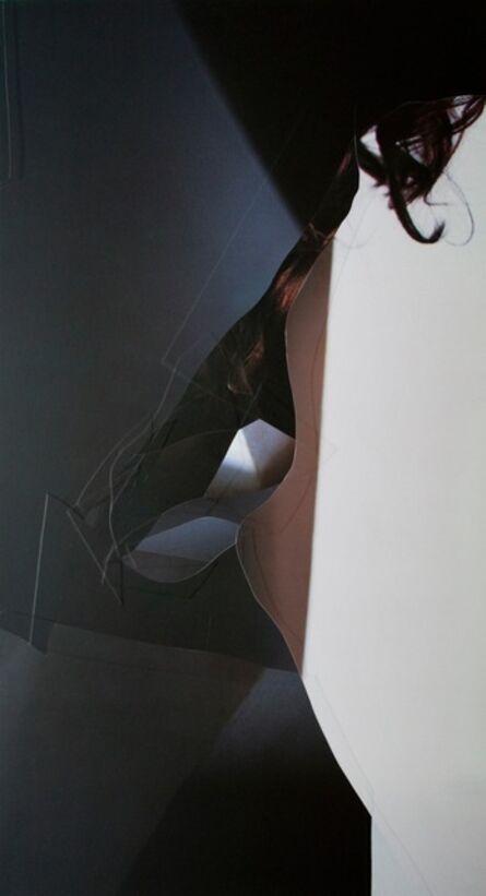 Raphael danke, 'Palmers', 2012