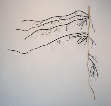 Dalya Luttwak, 'Taproot Surviving', 2015