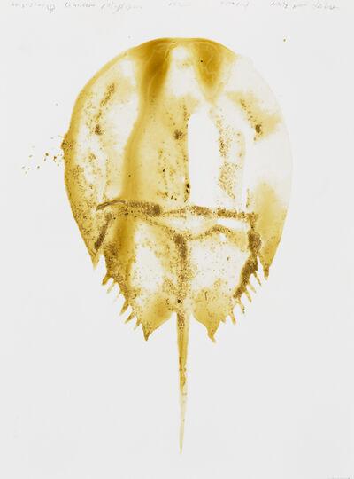 Alexis Rockman, 'Horseshoe Crab (Limulus Polyphemus)', 2014