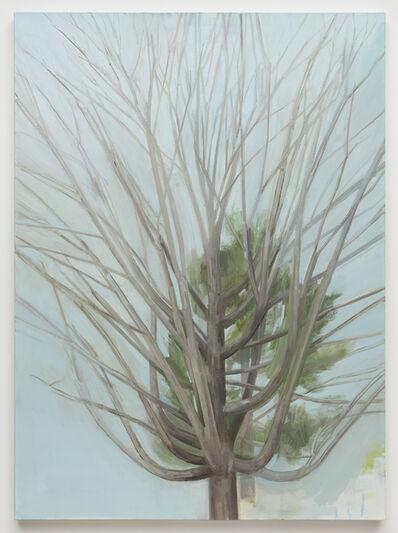Sylvia Plimack Mangold, 'The Winter Maple Tree', 2016