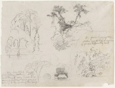 Frederic Edwin Church, 'Sketches from South America, probably from Colombia.  Botanical sketches.  A house.', 1853