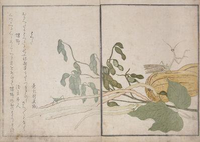 Kitagawa Utamaro, 'Cone-headed Grasshopper and Praying Mantis', 1788