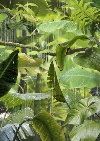 Ruud Van Empel, 'Jungle #4', 2021