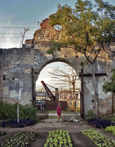 Andrew Moore, 'Un huerto familiar en un antiguo almacen, Rio San Juan, Matanzas', 2012
