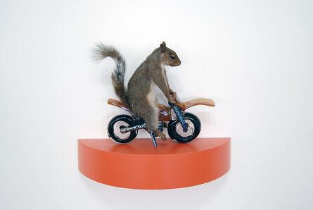Angus M. Powers, 'The Squirrels - orange', 2018