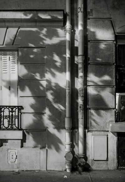 Michael Wolf (b. 1954), 'Paris Tree Shadows #5', 2014