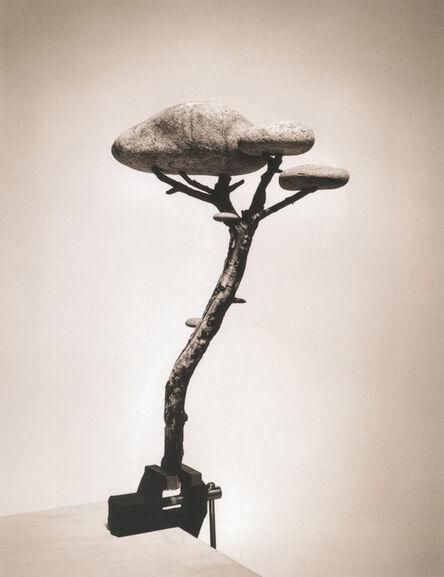 Chema Madoz, 'Untitled, Madrid (Piedra Bonsai)', 2000