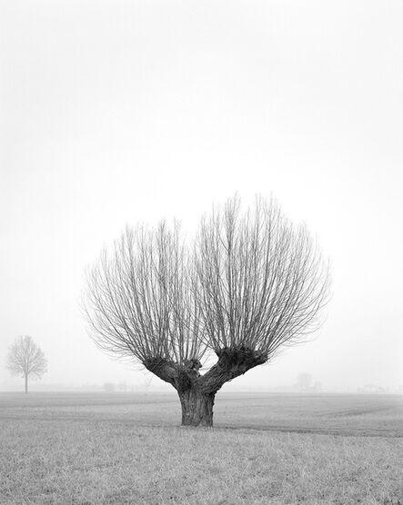 Paola De Pietri, 'Untitled 017, Questa Pianura series', 2015