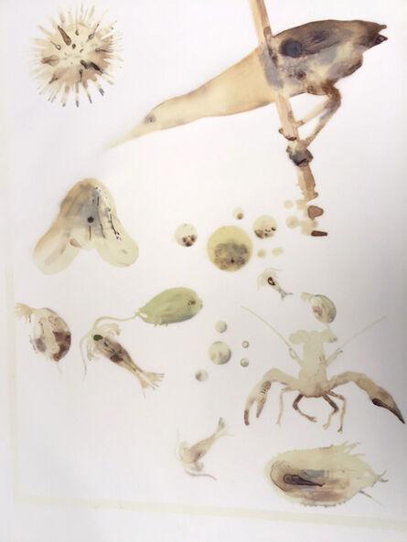 Alexis Rockman, 'Vernal Pond I', 2015