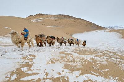 """Marc Progin, '""""Hardship"""" [Mongol Els desert, Mongolia]', 2014"""