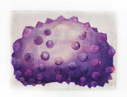 Margaret Harrison, 'Echinodermata (I)', 1966