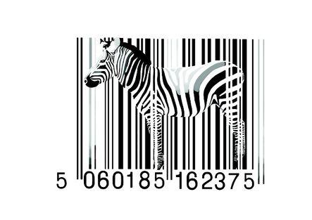 Day-z, 'Zebra Barcode', 2014