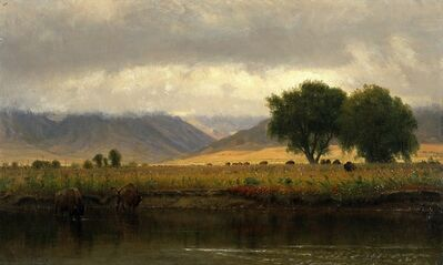 Worthington Whittredge, 'Buffalo on the Platte River', 1866