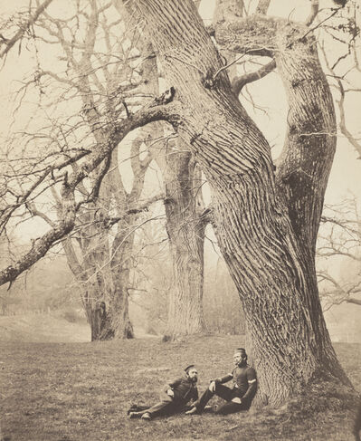Charles Thurston Thompson, 'Spanish Chestnut Trees in Albury Park, Surrey', 1857-1858