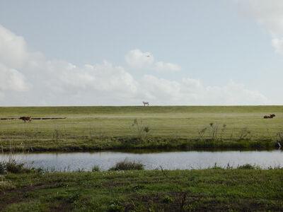 Richard Misrach, 'Helicopter Returning From Deep Water Horizon Spill, Venice, Louisiana', 2010