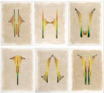 Andres Matias Pinilla, 'La descomposición de la piña', 2016