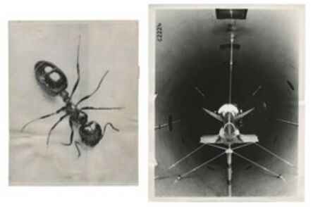 Murray Moss, 'TQ 81/82: Fire Ant/ARMY Wind Tunnel', 1960/1941