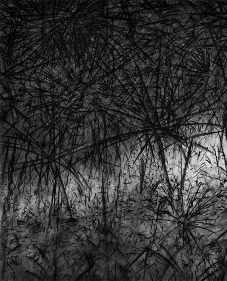 Damion Berger, 'Untitled VII', 2010