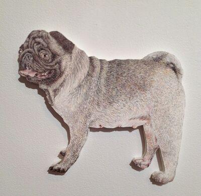 Craig Norton, 'Dog (Pug)', 2013