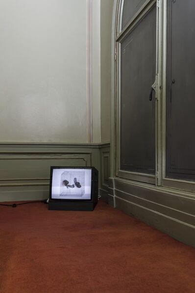 Sema Bekirovic, 'Grid', 2006