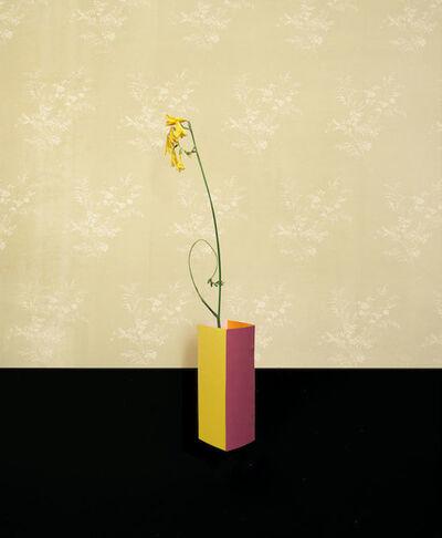 Martina Lindqvist, 'Untitled #5, from the series Murmurs', 2014