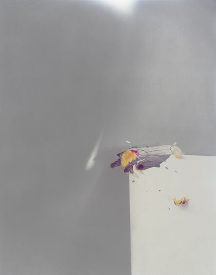 Laura Letinsky, 'Untitled #51, from the series Ill Form and Void Full', 2011