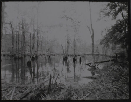 Elizabeth Mead, 'Greensprings, Williamsburg, Virginia April 2020', 2020