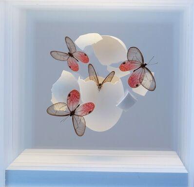 Jean Luc, 'Oeuf avec papillons', 2018