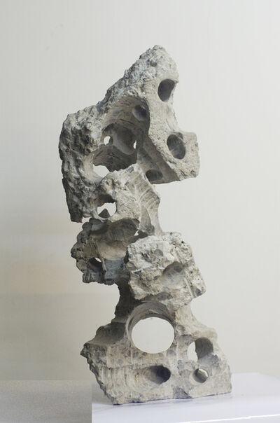 Shi Jinsong 史金淞, 'Qian Chuang Yuan#17 千創園#17', 2012