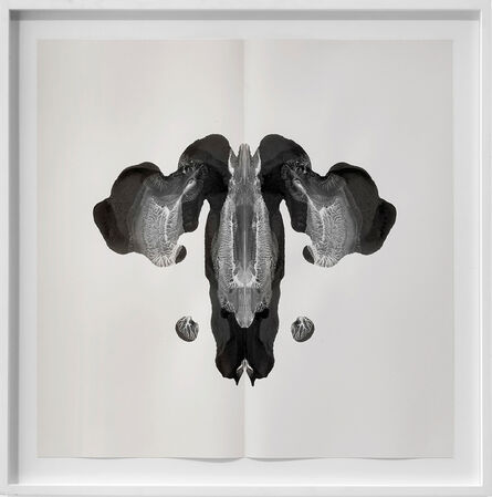 Cornelia Parker, 'Poison and Antidote Drawings (8)', 2012