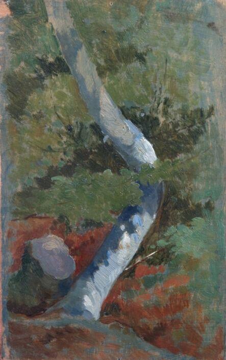 Giovanni Marchini, 'Faggio', 1935