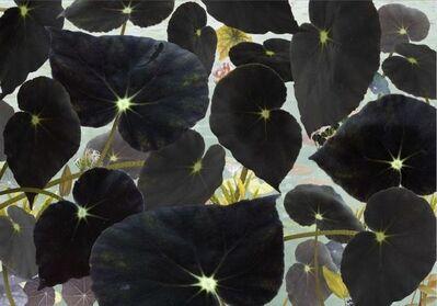 Ruud Van Empel, 'Floresta #3', 2018