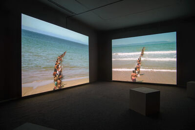 Francis Alÿs, 'Don't cross the bridge before you get to the river', 2008