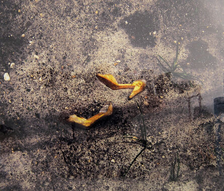 Kate Gilmore, 'By Any Means (Aftermath)', 2009