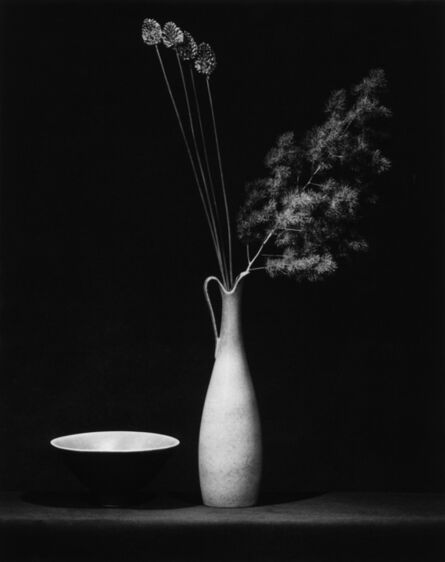 Robert Mapplethorpe, 'Flower', 1983