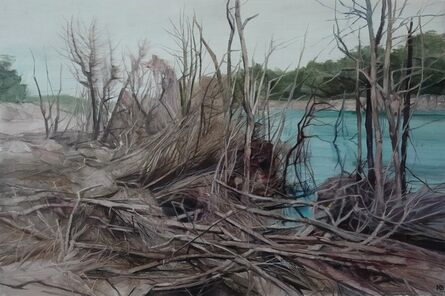 Nicholas Blowers, 'Savage Pond VI Study', 2018