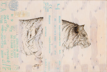 Joseph Rossano, 'EDNA: Panthera tigris altica (Siberian Tiger)      ', 2015