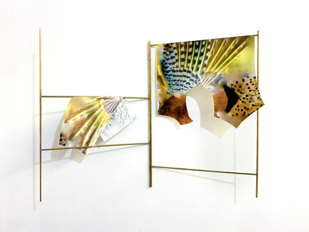 Clement Valla, 'Northern Flicker Suit', 2020