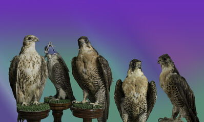 """Christto & Andrew, '""""Birds of Prey"""" from the series, Glory of the Artifice', 2015"""