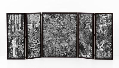 Rosana Schoijett, 'Collage #103', 2017
