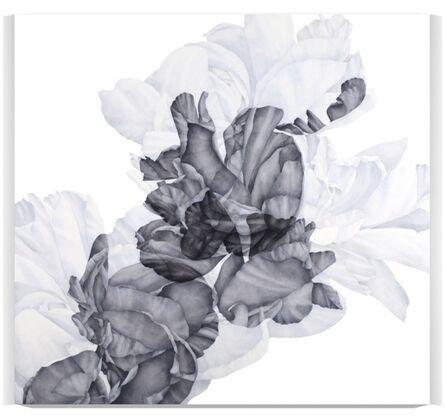 Greg Murr, 'Blooms [Nascence, b+d]', 2016