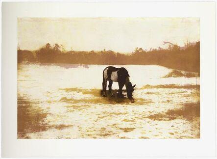 Peter Doig, 'Pinto', 2000-2001