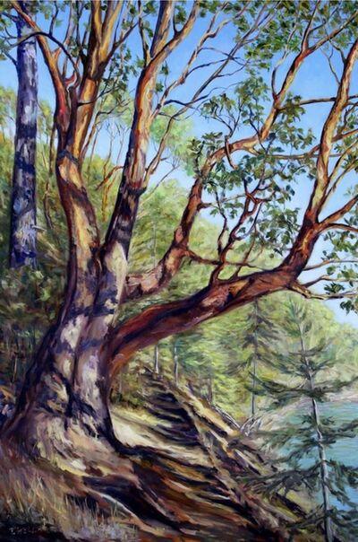 Terrill Welch, 'Storytelling Arbutus Tree Bennett Bay Mayne Island BC', 2017