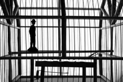 Cristina Kahlo, '¿Sin vuelo posible?', 2020