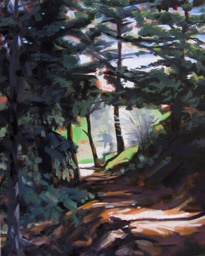 Tracy Wall, 'Sunlight on Beaver Brook Trail', 2015