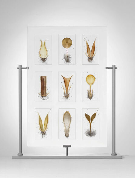 Steffen Dam, 'THE SECRET LIFE OF PLANTS      ', 2014